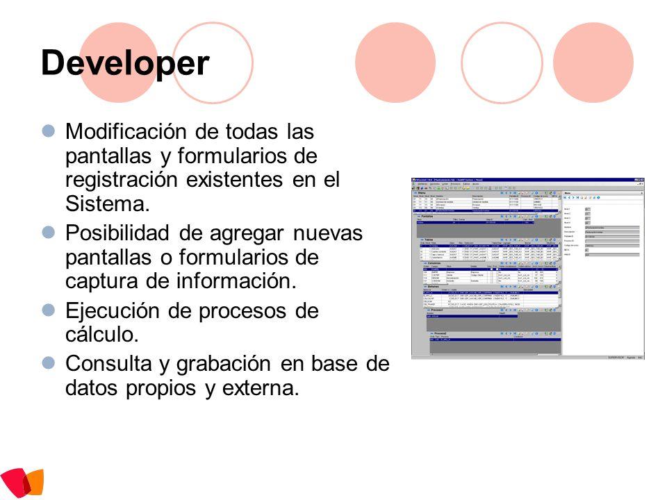 Developer Modificación de todas las pantallas y formularios de registración existentes en el Sistema. Posibilidad de agregar nuevas pantallas o formul