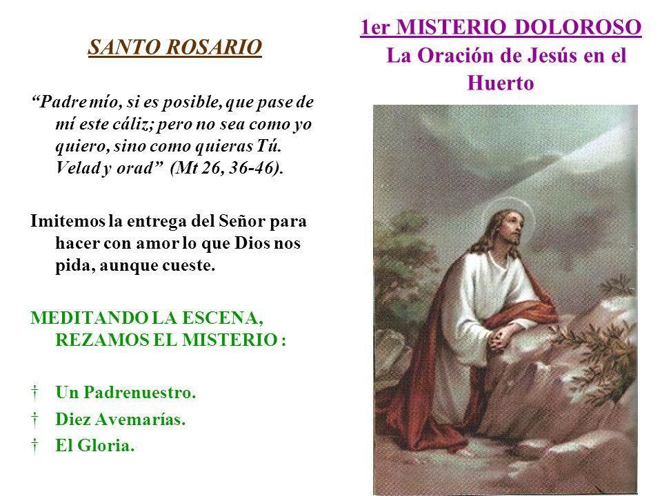 1er MISTERIO DOLOROSO La Oración de Jesús en el Huerto SANTO ROSARIO Padre mío, si es posible, que pase de mí este cáliz; pero no sea como yo quiero,