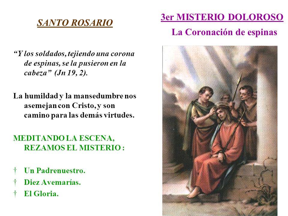 3er MISTERIO DOLOROSO La Coronación de espinas SANTO ROSARIO Y los soldados, tejiendo una corona de espinas, se la pusieron en la cabeza (Jn 19, 2). L