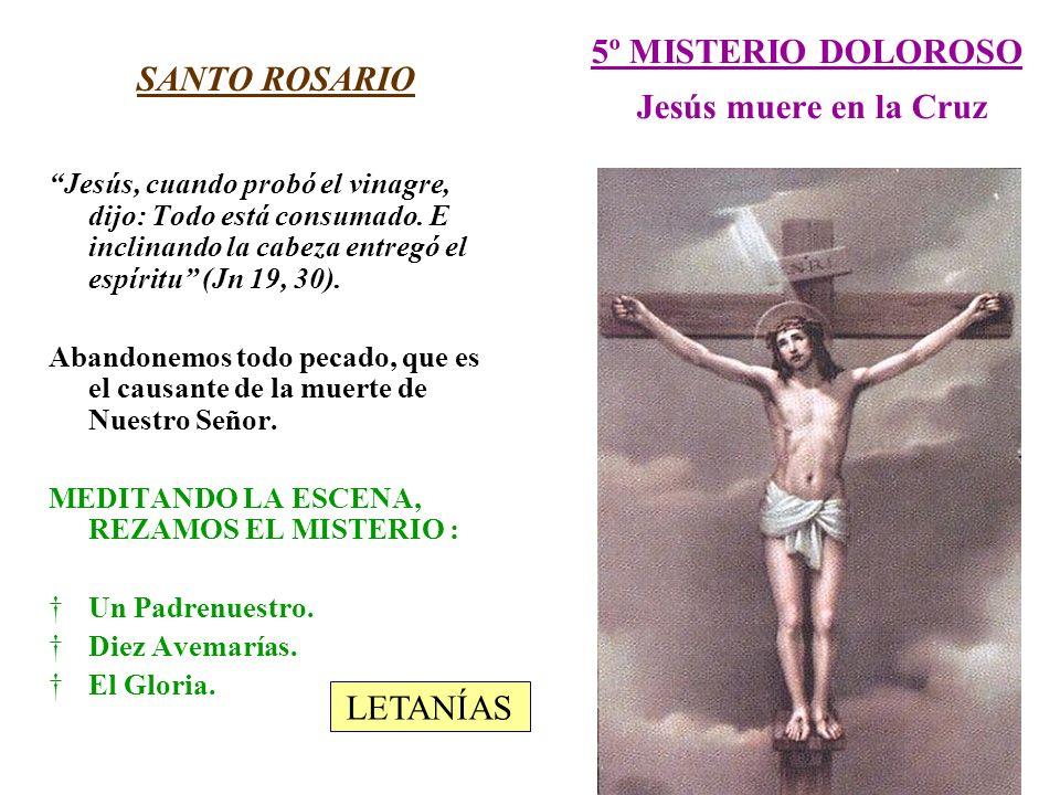 5º MISTERIO DOLOROSO Jesús muere en la Cruz SANTO ROSARIO Jesús, cuando probó el vinagre, dijo: Todo está consumado. E inclinando la cabeza entregó el