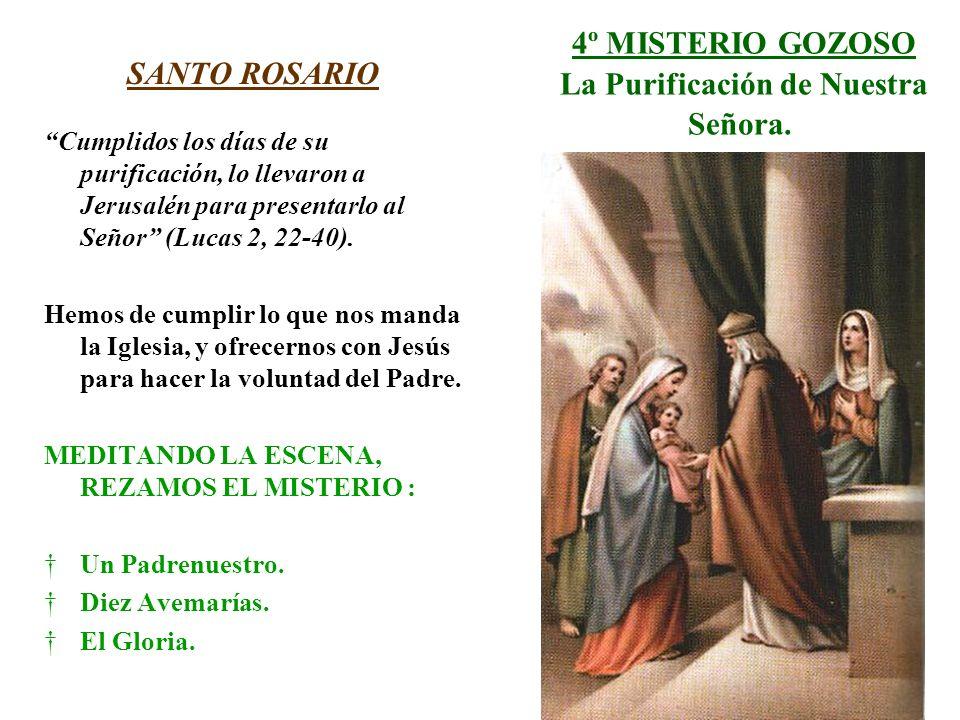 4º MISTERIO GOZOSO La Purificación de Nuestra Señora. SANTO ROSARIO Cumplidos los días de su purificación, lo llevaron a Jerusalén para presentarlo al