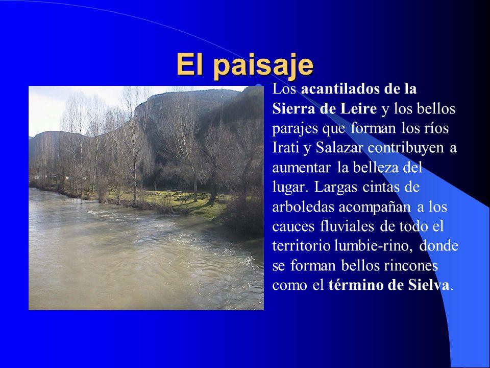 El paisaje Lumbier disfruta de un paisaje variado y espectacular. Los ríos Irati y Salazar recorren su territorio y forman, al atravesar las estribaci