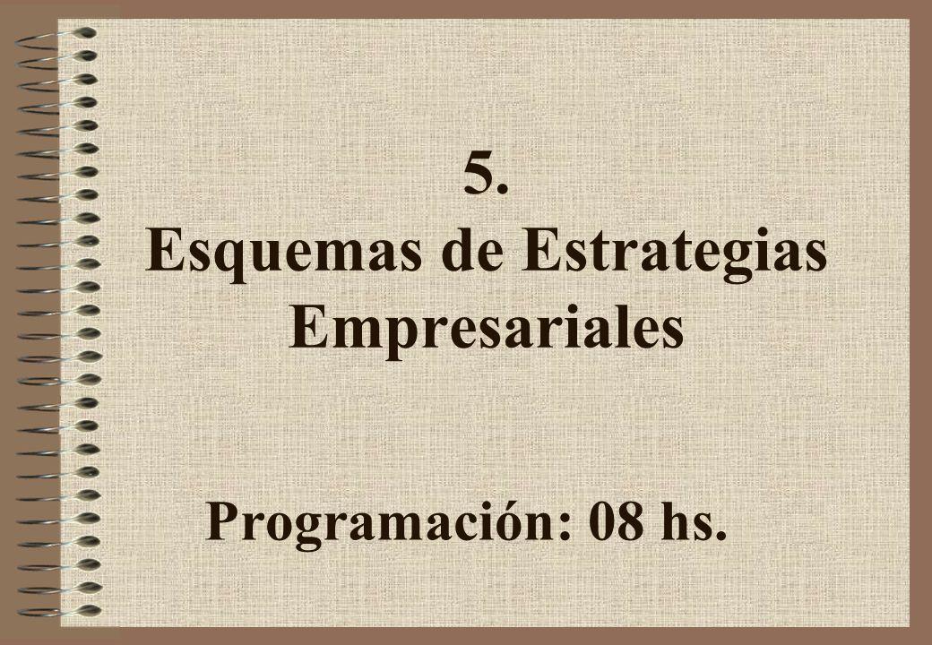 5. Esquemas de Estrategias Empresariales Programación: 08 hs.