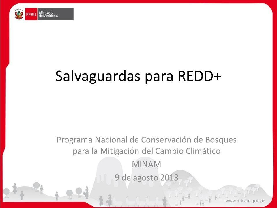 Índice Resumen sobre REDD+ Qué se debe de entender por Salvaguardas Salvaguardas de Cancún Procesos actuales del MINAM – Proyecto REDD+ MINAM – FCMC – CI para Salvaguardas – PNCBMCC y PNUD (UNREDD) – PNCBMCC, CBC-GIZ y Proyecto REDD+ MINAM – FCPF y FIP – REDD+ SES