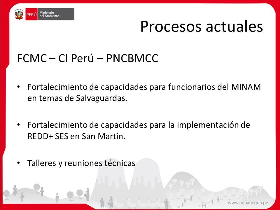 Procesos actuales FCMC – CI Perú – PNCBMCC Fortalecimiento de capacidades para funcionarios del MINAM en temas de Salvaguardas. Fortalecimiento de cap