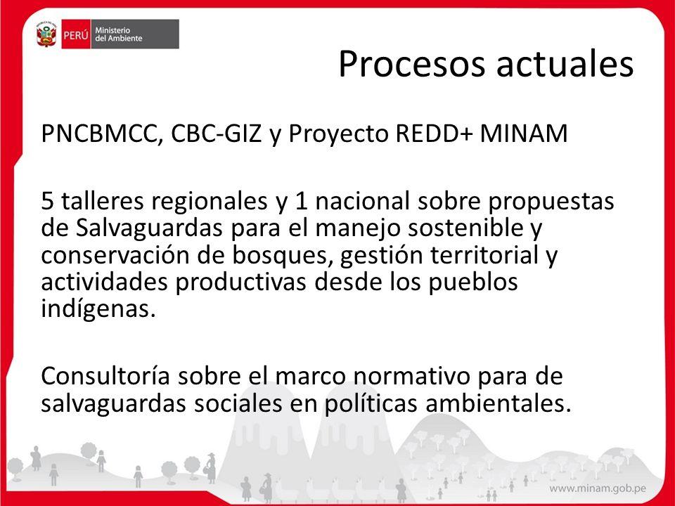 Procesos actuales PNCBMCC, CBC-GIZ y Proyecto REDD+ MINAM 5 talleres regionales y 1 nacional sobre propuestas de Salvaguardas para el manejo sostenibl