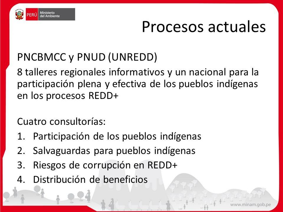 Procesos actuales PNCBMCC y PNUD (UNREDD) 8 talleres regionales informativos y un nacional para la participación plena y efectiva de los pueblos indíg
