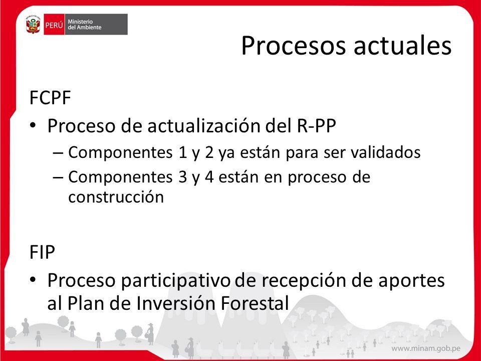 Procesos actuales FCPF Proceso de actualización del R-PP – Componentes 1 y 2 ya están para ser validados – Componentes 3 y 4 están en proceso de const