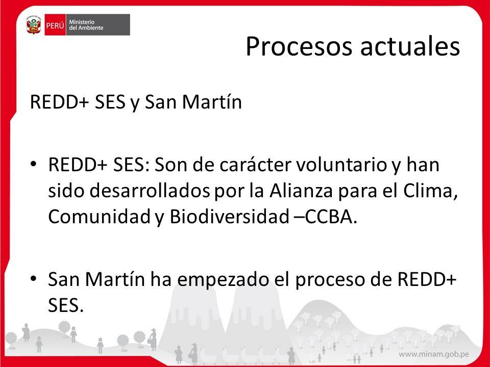 Procesos actuales REDD+ SES y San Martín REDD+ SES: Son de carácter voluntario y han sido desarrollados por la Alianza para el Clima, Comunidad y Biod