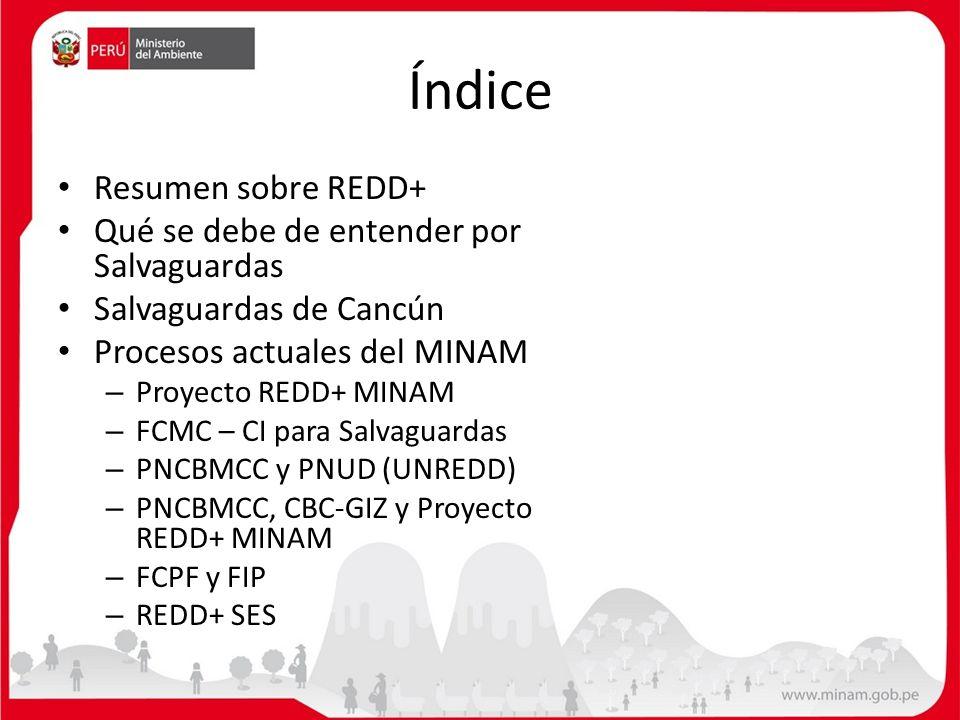 Índice Resumen sobre REDD+ Qué se debe de entender por Salvaguardas Salvaguardas de Cancún Procesos actuales del MINAM – Proyecto REDD+ MINAM – FCMC –