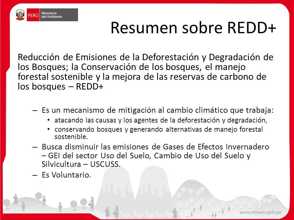 Resumen sobre REDD+ Reducción de Emisiones de la Deforestación y Degradación de los Bosques; la Conservación de los bosques, el manejo forestal sosten