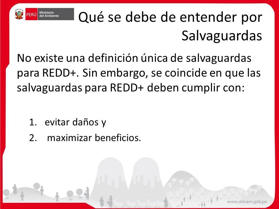 Qué se debe de entender por Salvaguardas No existe una definición única de salvaguardas para REDD+. Sin embargo, se coincide en que las salvaguardas p