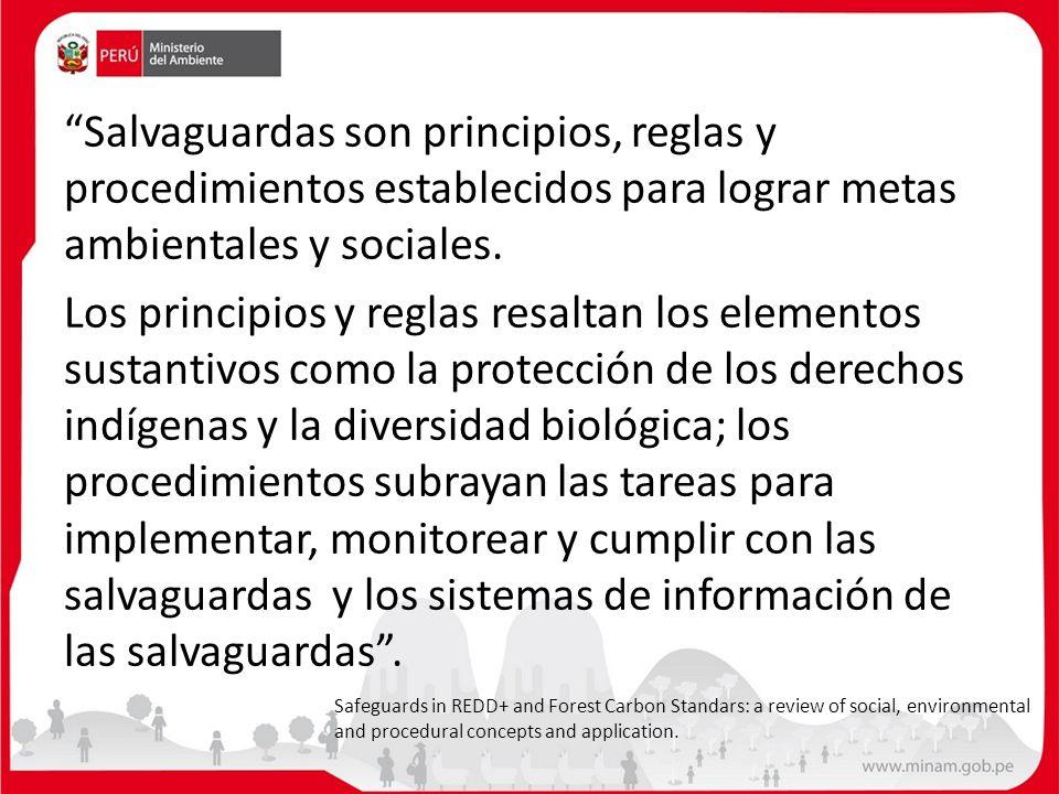 Salvaguardas son principios, reglas y procedimientos establecidos para lograr metas ambientales y sociales. Los principios y reglas resaltan los eleme