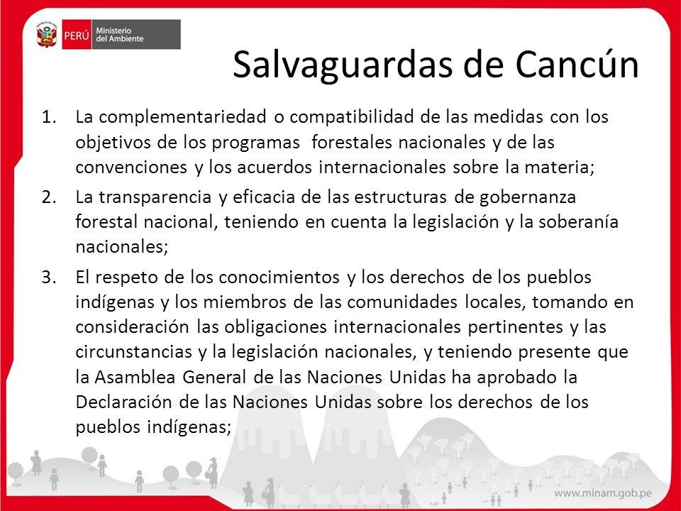 Salvaguardas de Cancún 1.La complementariedad o compatibilidad de las medidas con los objetivos de los programas forestales nacionales y de las conven