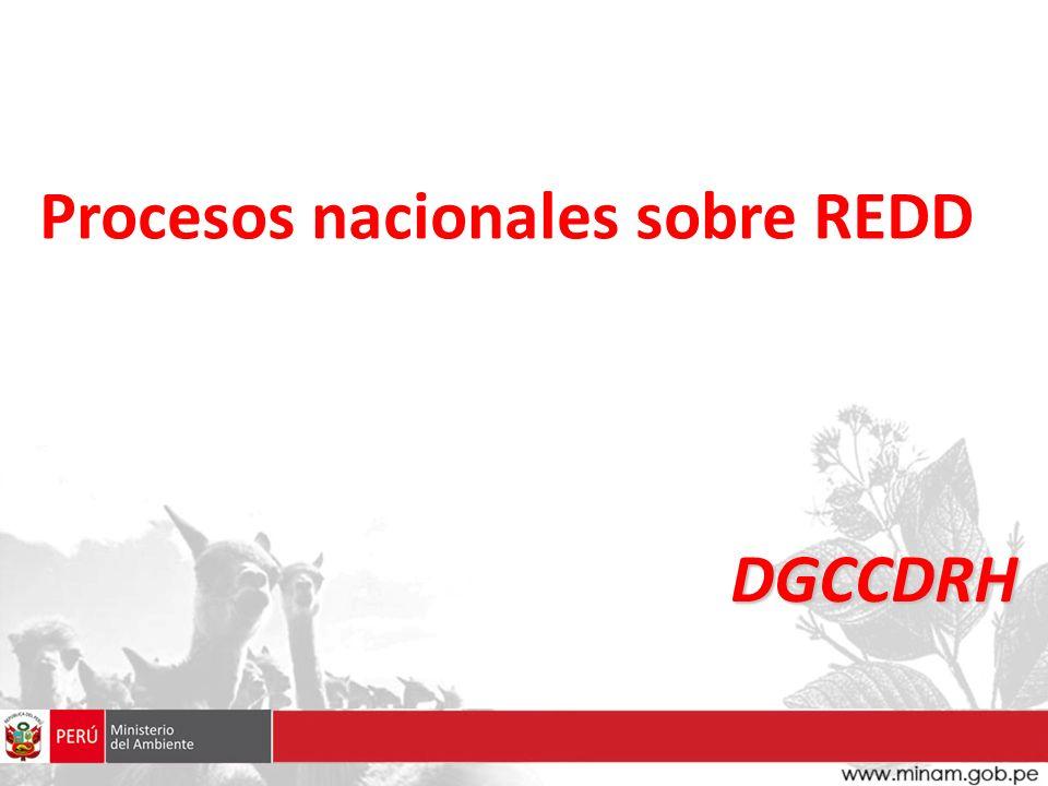 1.FASE DE PREPARACION – RESULTADOS ESPERADOS 2. INSTITUCIONALIDAD PLANTEADA 3.