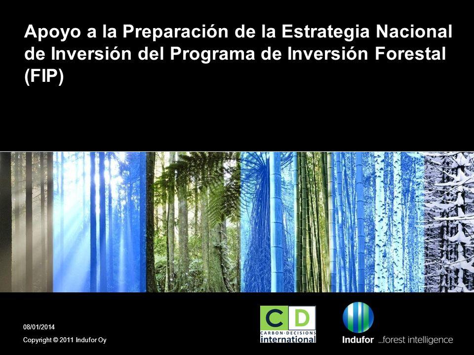 FIP El Programa de Inversión Forestal (FIP) es un programa específico del Fondo Estratégico sobre el Clima (SCF), que es uno de los dos fondos en el marco de los Fondos de Inversión en el Clima (FIC), apoyado por los Banco Multilaterales de Desarrollo (Banco Mundial y Banco Inter- Americano de Desarrollo) El otro fondo es El Programa Piloto para la Resistencia al Cambio Climático (PPACC) Copyright © 2009 Indufor Oy2