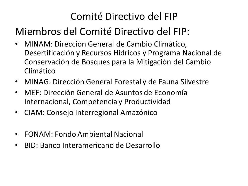 Miembros del Comité Directivo del FIP: MINAM: Dirección General de Cambio Climático, Desertificación y Recursos Hídricos y Programa Nacional de Conser