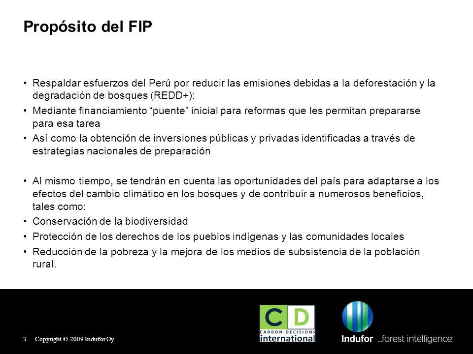Financiamiento FIP En el caso de Perú, el financiamiento acordado es de: 50 millones de dólares (USD) 50% en préstamo reembolsable y 50 % en donación Copyright © 2009 Indufor Oy4