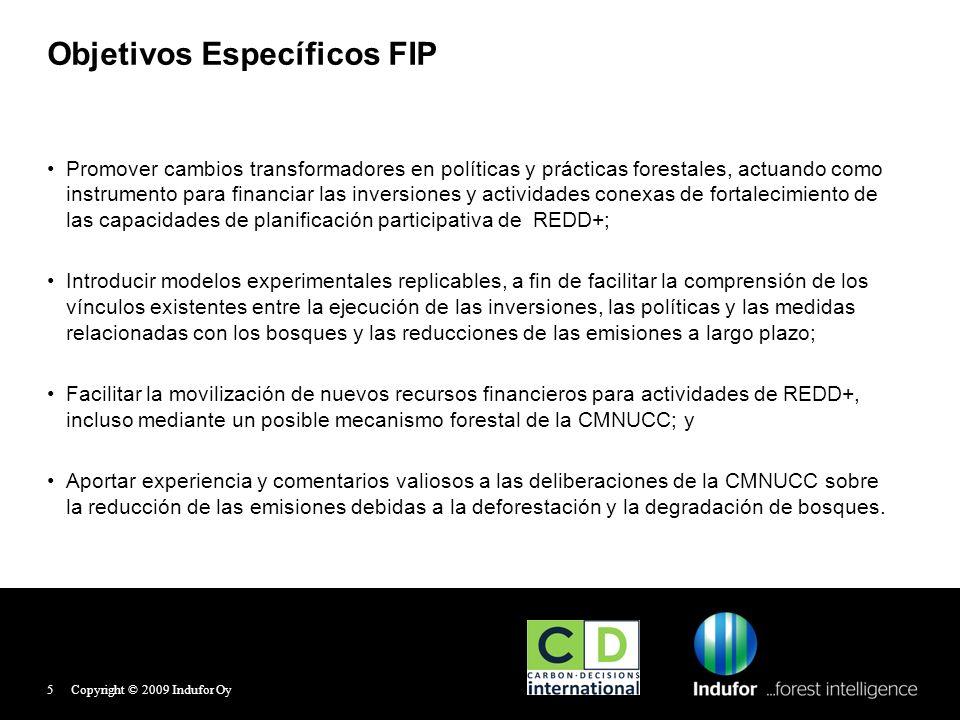 Estrategias FIP Apoyar y Promover inversiones en las siguientes áreas: Capacidad institucional, gobernanza forestal e información, p.