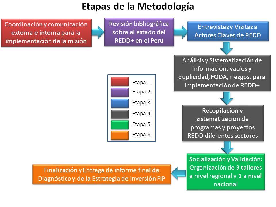 Revisión bibliográfica sobre el estado del REDD+ en el Perú Recopilación y sistematización de programas y proyectos REDD diferentes sectores Entrevist