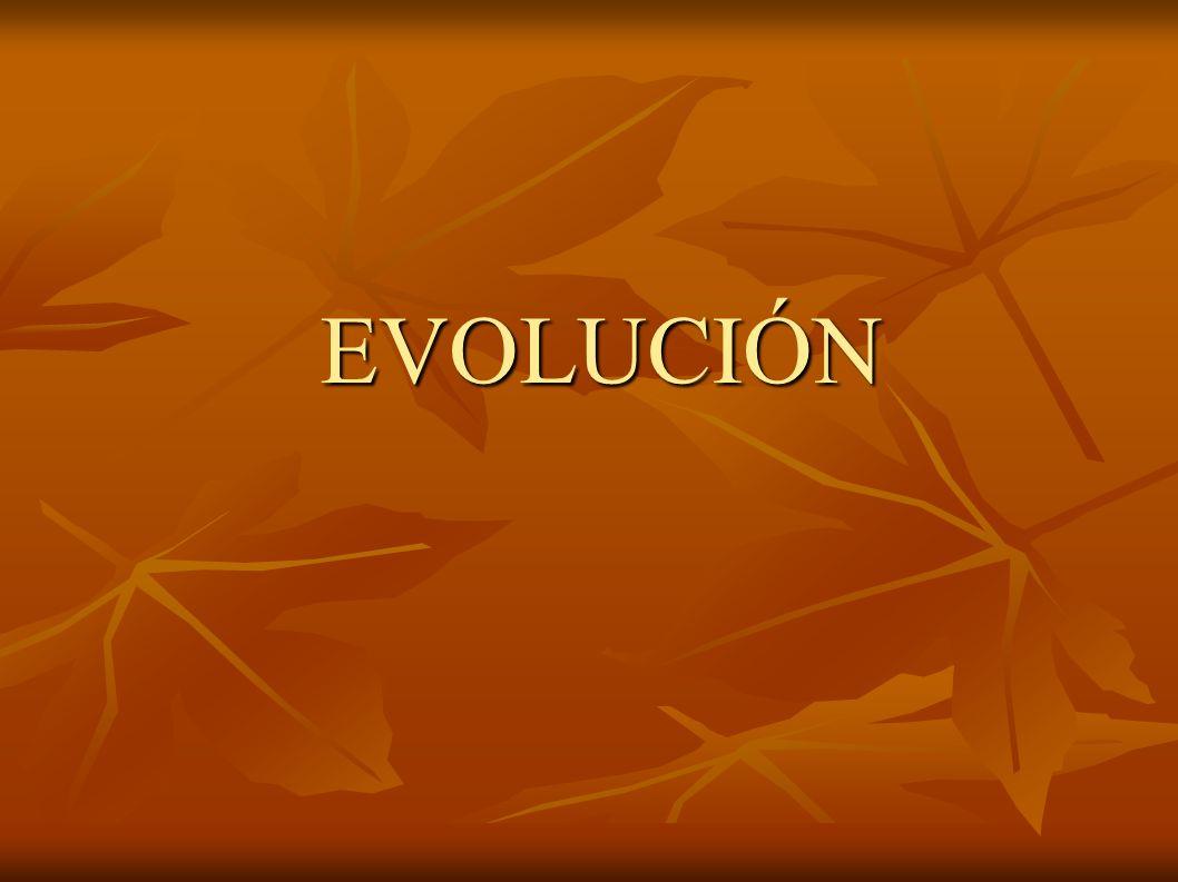 EVOLUCIÓN EVOLUCIÓN
