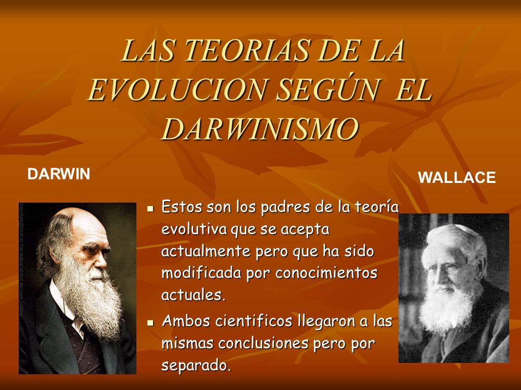 Estos son los padres de la teoría evolutiva que se acepta actualmente pero que ha sido modificada por conocimientos actuales.