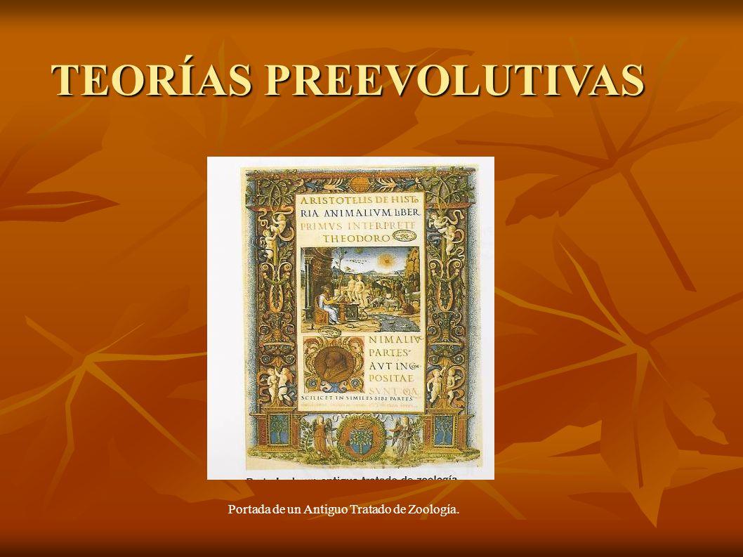 Portada de un Antiguo Tratado de Zoología. TEORÍAS PREEVOLUTIVAS TEORÍAS PREEVOLUTIVAS