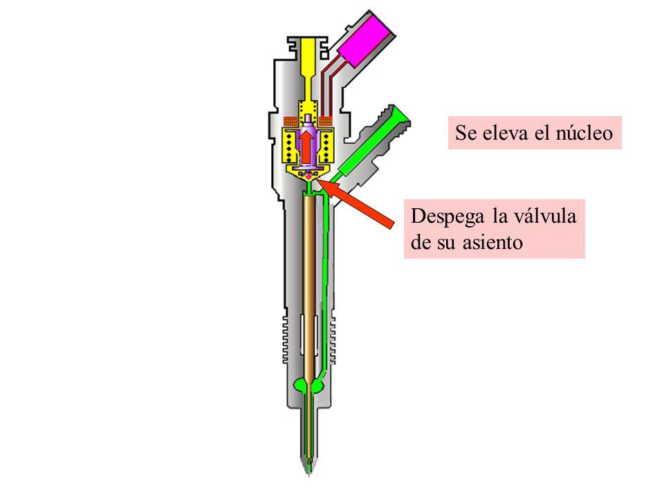 Se eleva el núcleo Despega la válvula de su asiento