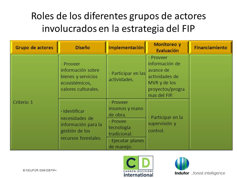 © INDUFOR: 6386 IDB FIP< Roles de los diferentes grupos de actores involucrados en la estrategia del FIP