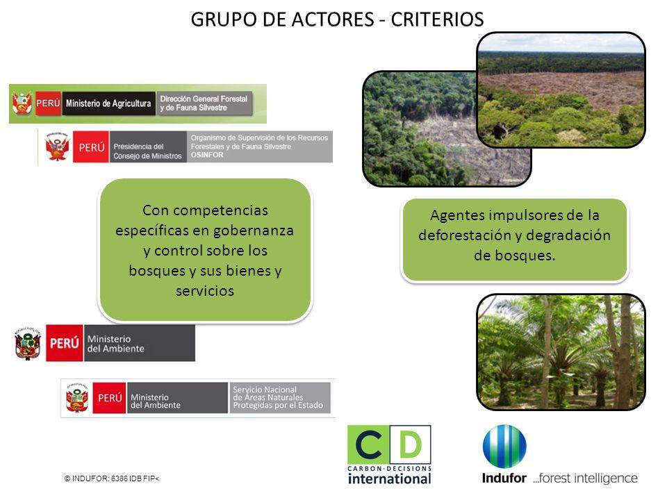 © INDUFOR: 6386 IDB FIP< Agentes impulsores de la deforestación y degradación de bosques. GRUPO DE ACTORES - CRITERIOS Con competencias específicas en