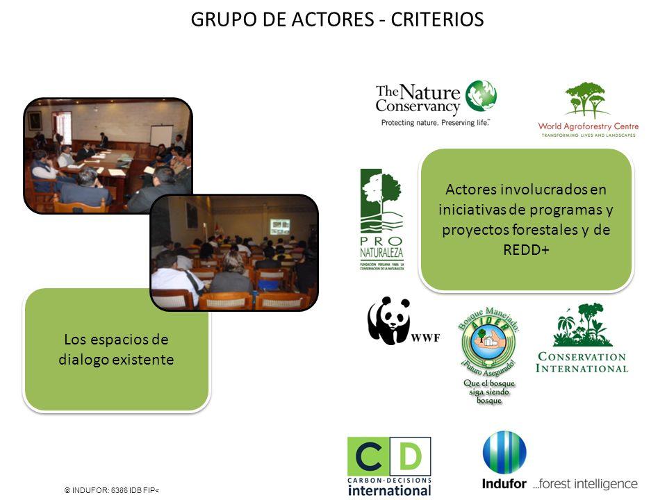 GRUPO DE ACTORES - CRITERIOS © INDUFOR: 6386 IDB FIP< Los espacios de dialogo existente Actores involucrados en iniciativas de programas y proyectos f
