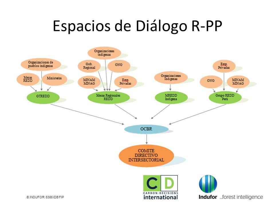 Espacios de Diálogo R-PP © INDUFOR: 6386 IDB FIP