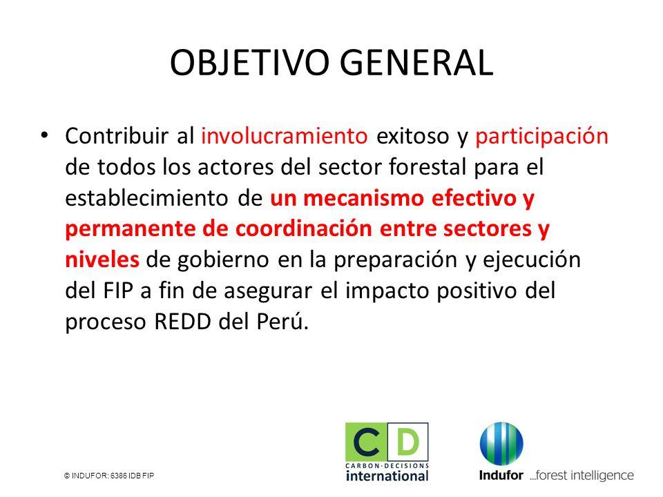 OBJETIVO GENERAL Contribuir al involucramiento exitoso y participación de todos los actores del sector forestal para el establecimiento de un mecanism