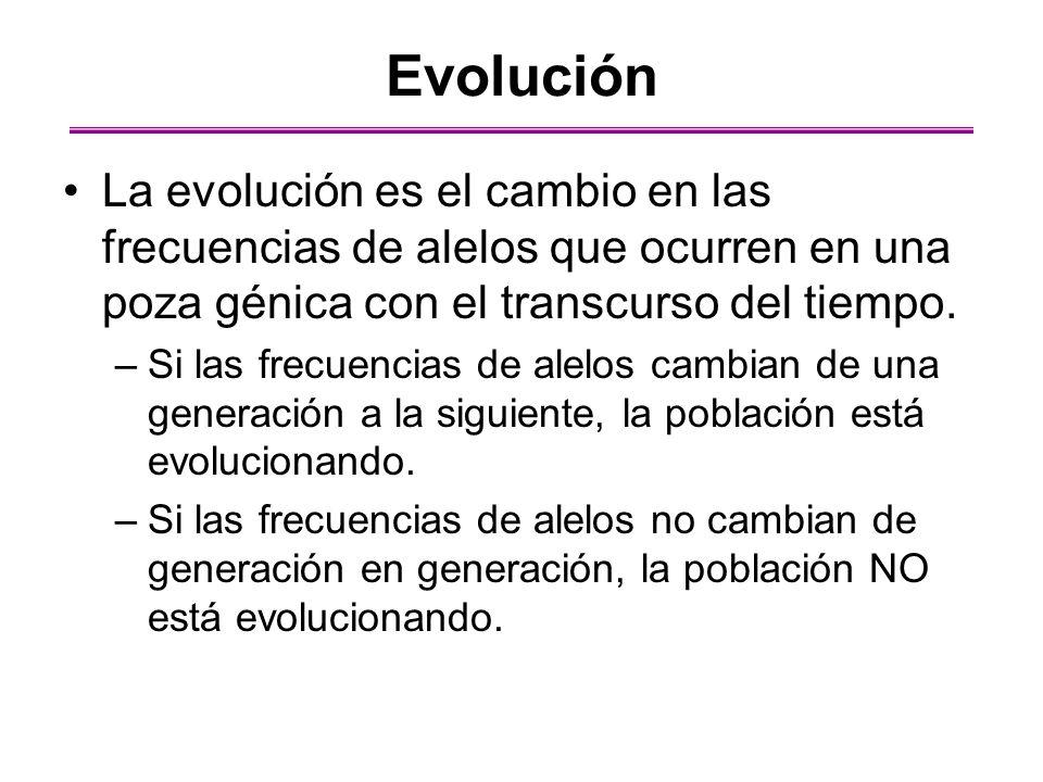 Evolución La evolución es el cambio en las frecuencias de alelos que ocurren en una poza génica con el transcurso del tiempo. –Si las frecuencias de a