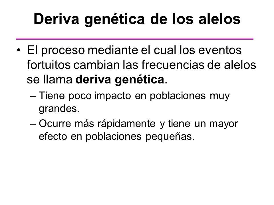 Deriva genética de los alelos El proceso mediante el cual los eventos fortuitos cambian las frecuencias de alelos se llama deriva genética. –Tiene poc
