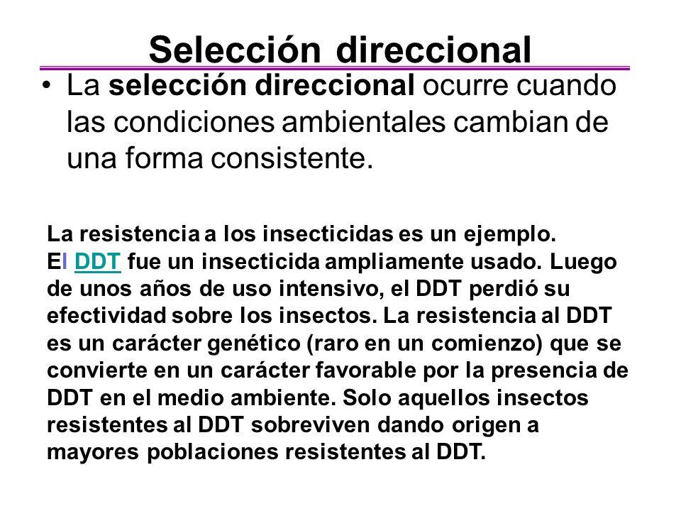 Selección direccional La selección direccional ocurre cuando las condiciones ambientales cambian de una forma consistente. La resistencia a los insect