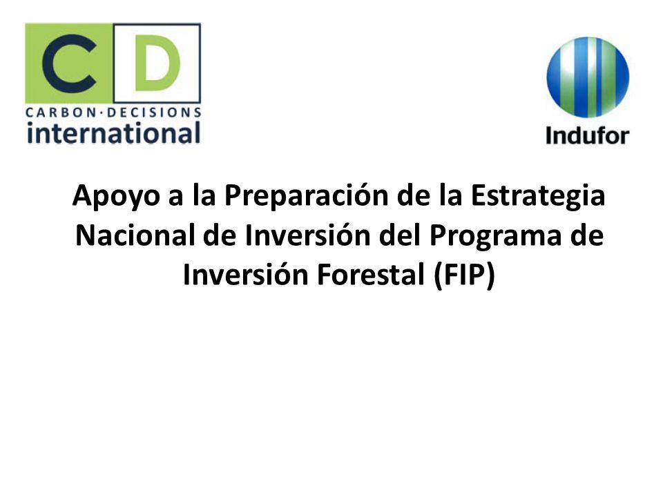 Apoyo a la Preparación de la Estrategia Nacional de Inversión del Programa de Inversión Forestal (FIP)