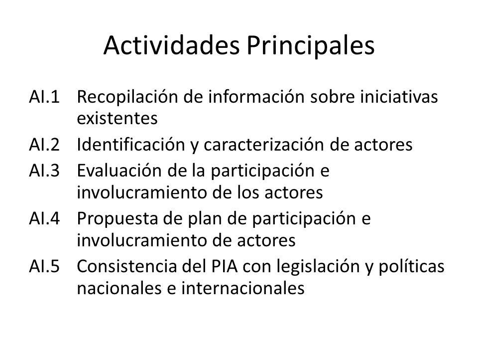 Actividades Principales AI.1Recopilación de información sobre iniciativas existentes AI.2Identificación y caracterización de actores AI.3Evaluación de