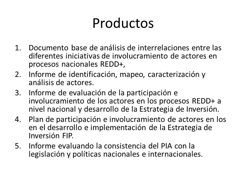 Productos 1.Documento base de análisis de interrelaciones entre las diferentes iniciativas de involucramiento de actores en procesos nacionales REDD+,