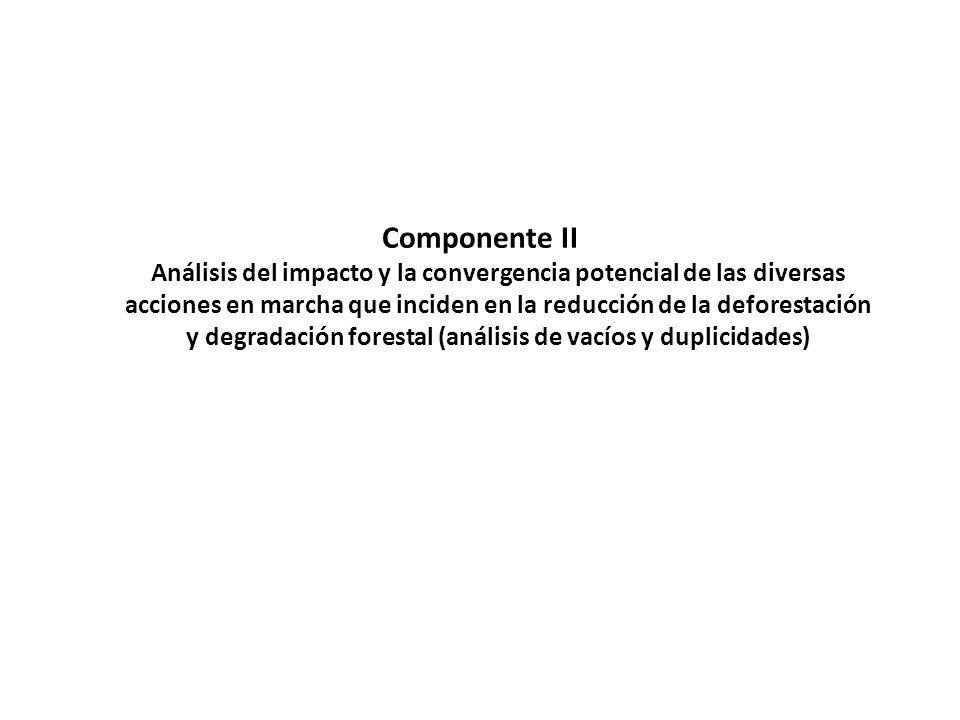 Componente II Análisis del impacto y la convergencia potencial de las diversas acciones en marcha que inciden en la reducción de la deforestación y de