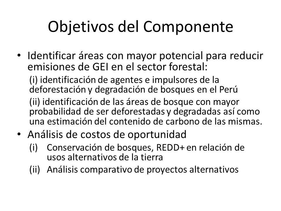 Objetivos del Componente Identificar áreas con mayor potencial para reducir emisiones de GEI en el sector forestal: (i) identificación de agentes e im