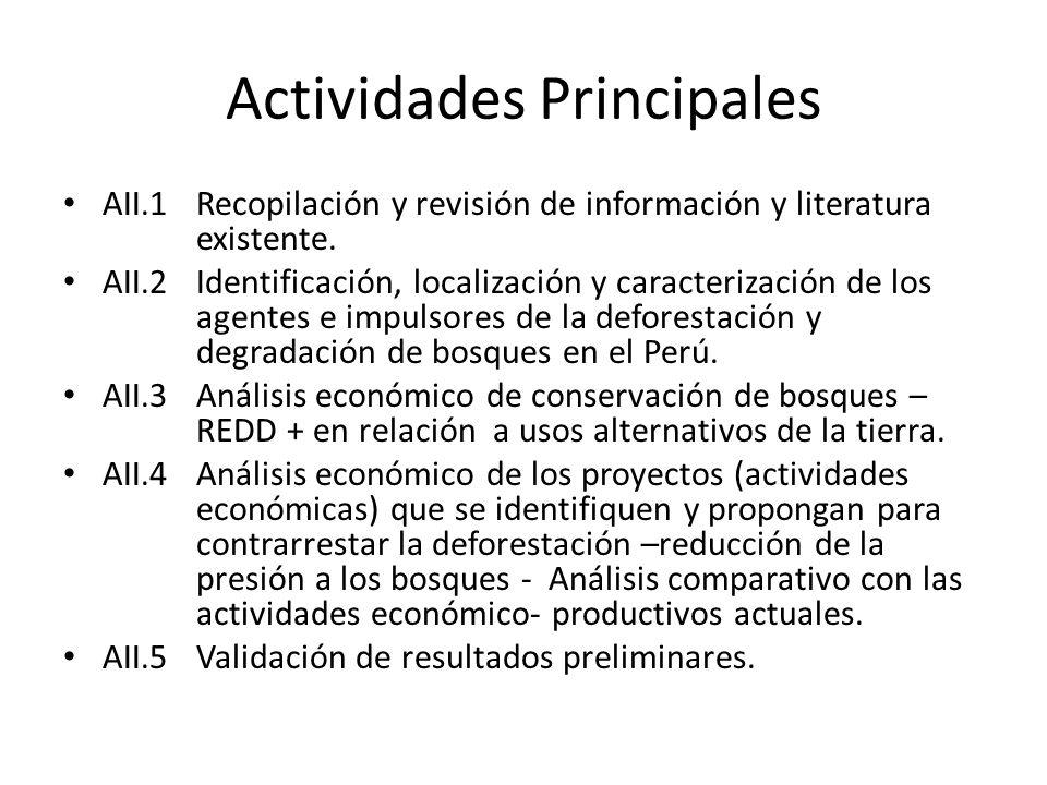 Actividades Principales AII.1Recopilación y revisión de información y literatura existente. AII.2Identificación, localización y caracterización de los