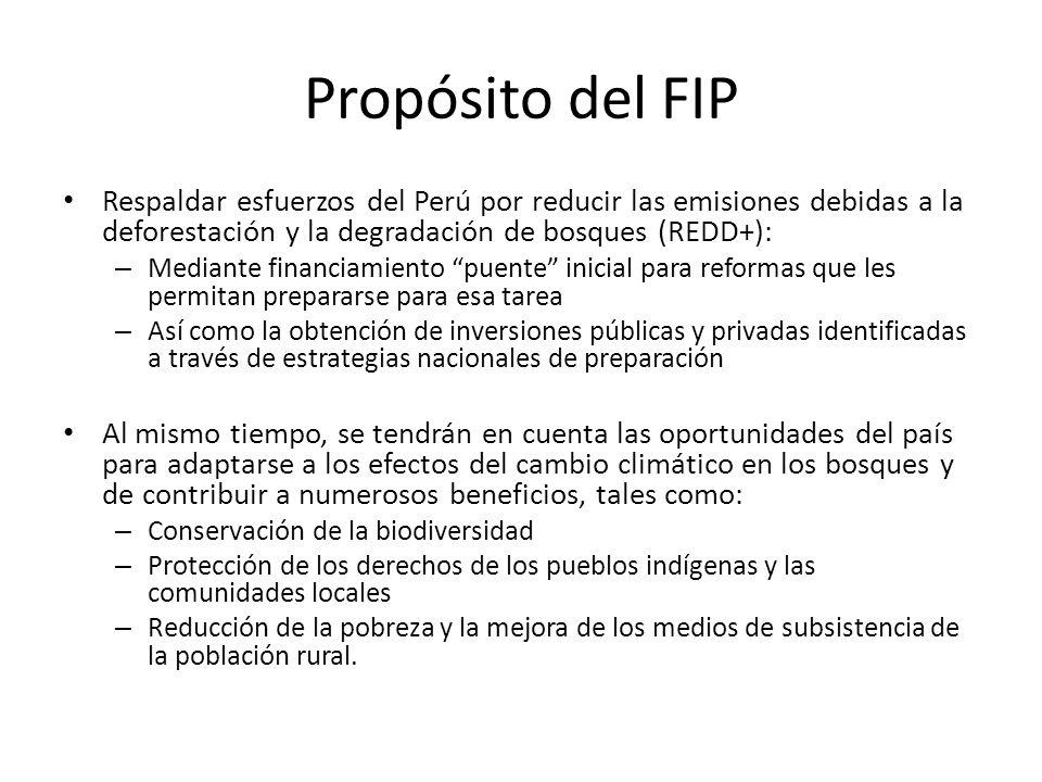 Propósito del FIP Respaldar esfuerzos del Perú por reducir las emisiones debidas a la deforestación y la degradación de bosques (REDD+): – Mediante fi