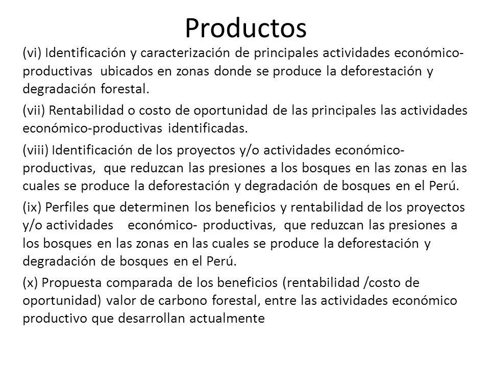 Productos (vi) Identificación y caracterización de principales actividades económico- productivas ubicados en zonas donde se produce la deforestación