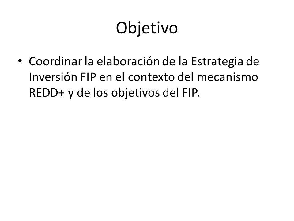 Objetivo Coordinar la elaboración de la Estrategia de Inversión FIP en el contexto del mecanismo REDD+ y de los objetivos del FIP.