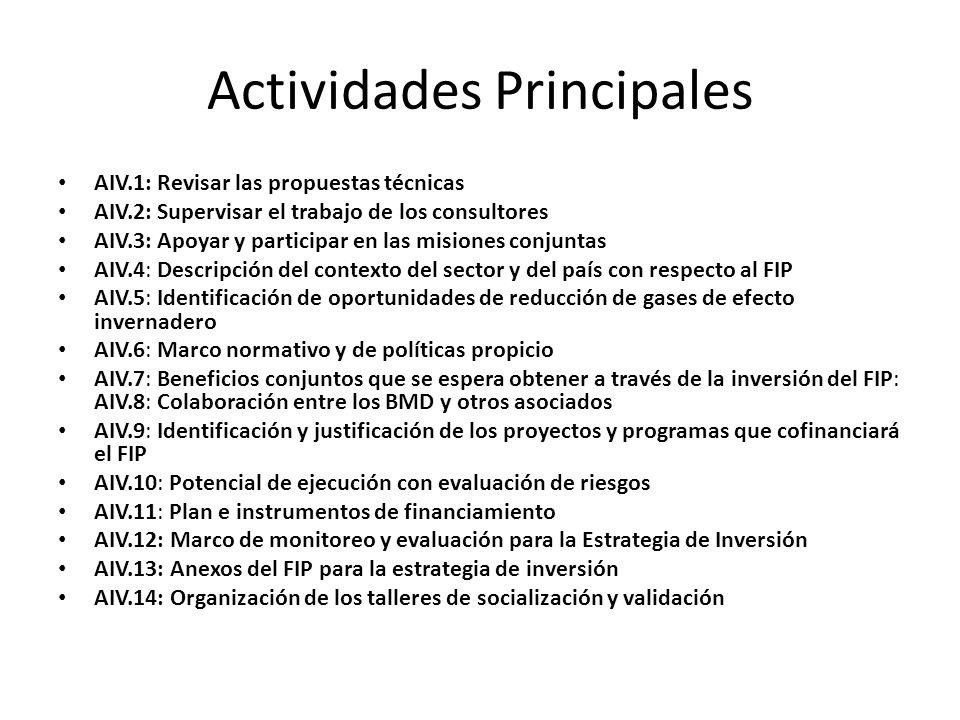 Actividades Principales AIV.1: Revisar las propuestas técnicas AIV.2: Supervisar el trabajo de los consultores AIV.3: Apoyar y participar en las misio