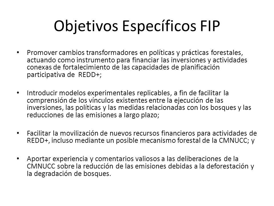 Objetivos Específicos FIP Promover cambios transformadores en políticas y prácticas forestales, actuando como instrumento para financiar las inversion