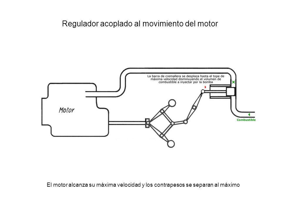 Regulador acoplado al movimiento del motor El motor alcanza su máxima velocidad y los contrapesos se separan al máximo