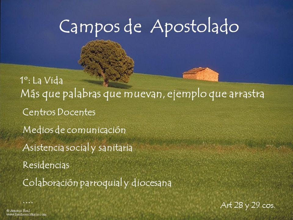Campos de Apostolado 1º: La Vida Más que palabras que muevan, ejemplo que arrastra Art 28 y 29 cos.