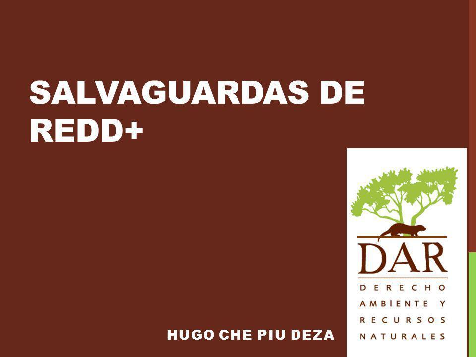 SALVAGUARDAS DE REDD+ HUGO CHE PIU DEZA